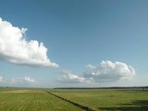 Blauwe hemel en groen gebied Stock Foto