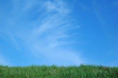 Blauwe hemel en groen gras Stock Fotografie