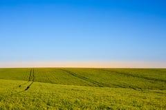 Blauwe hemel en groen gras Royalty-vrije Stock Afbeelding