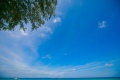 Blauwe hemel en Groene boom bij andaman overzees stock foto's