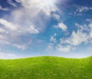 Blauwe hemel en groene grasweide Stock Afbeelding