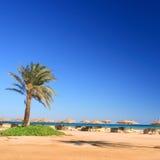 Blauwe hemel en paraplu's op het strand Royalty-vrije Stock Fotografie