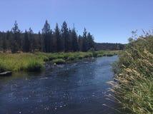 Blauwe hemel en rivier stock foto