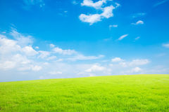 Blauwe hemel en wit wolken en gras Royalty-vrije Stock Foto's