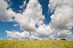 Blauwe hemel en wit wolken en gele gebied Stock Foto