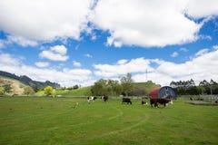 Blauwe hemel en wit wolkengras Stock Foto
