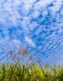 Blauwe hemel en wolk royalty-vrije stock foto