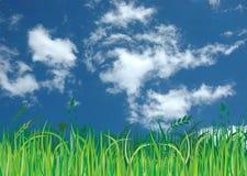 Blauwe hemel, groene gras en wolken royalty-vrije illustratie
