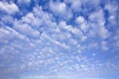Blauwe hemel met cumuluswolken Stock Foto's