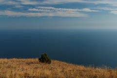 Blauwe hemel met wolken en vliegtuigslepen over de Zwarte Zee De samenstelling van de aard Stock Fotografie