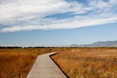 Blauwe hemel, witte wolk en windende weg Stock Afbeeldingen