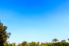 Blauwe hemelachtergrond Royalty-vrije Stock Foto's