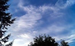 Blauwe hemelachtergrond met uiterst kleine wolken Royalty-vrije Stock Foto