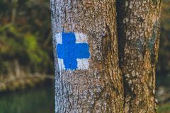 Blauwe het tekenreis van de herfst bosbomen Stock Foto's