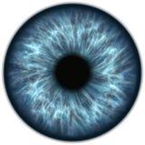 Blauwe iris royalty-vrije illustratie