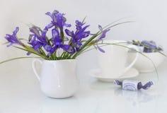 Blauwe irissen in een vaas Stock Foto