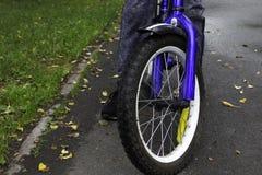 Blauwe kinderen` s fiets op de weg van het de herfstasfalt stock foto
