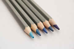 Blauwe Kleurende Potloden Stock Foto