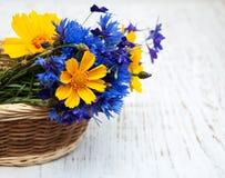 Blauwe korenbloemen en kosmosbloemen royalty-vrije stock foto's