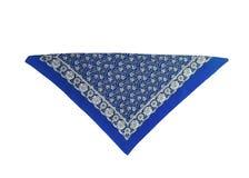 Blauwe, lichtblauwe hoofddoek-bandana met een geïsoleerd patroon, royalty-vrije stock foto's