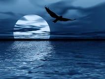 Blauwe maan en vogel Stock Fotografie