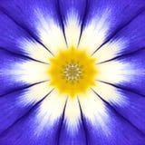 Blauwe Mandala Flower Center Concentrisch Caleidoscoopontwerp royalty-vrije stock afbeeldingen
