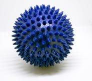 Blauwe massage stekelige bal Royalty-vrije Stock Foto