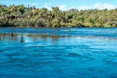 Blauwe meer en bomen op de kust Het gebied van Nelson, Nieuw Zeeland stock foto's