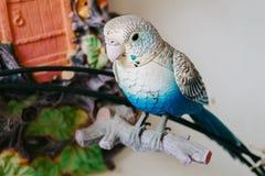 Blauwe mobiele plastic vogeltribune op het valse hout Stock Afbeeldingen
