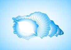 Blauwe mooie overzeese cockleshell. Stock Afbeeldingen