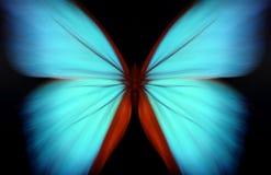 Blauwe morpho - samenvatting Royalty-vrije Stock Foto's