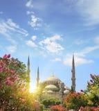 Blauwe moskee, Istanboel reis concept Stock Afbeelding
