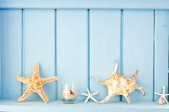 Blauwe muurdecoratie met schaaldieren Royalty-vrije Stock Foto's