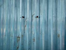 blauwe muurdozen royalty-vrije stock foto