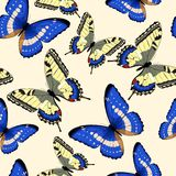 Blauwe naadloze vlinders Royalty-vrije Stock Foto