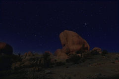 Blauwe Nachthemel in Joshua Tree National Park Stock Foto