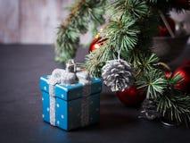 Blauwe nette boomtakken met Kerstmissnuisterijen Royalty-vrije Stock Fotografie