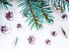Blauwe nette tak met kristallen voor decoratie Royalty-vrije Stock Afbeeldingen