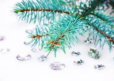 Blauwe nette tak met kristallen voor decoratie Stock Afbeelding