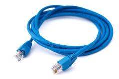 Blauwe netwerkkabel Stock Foto's