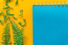 Blauwe notitieboekje Groene bladeren minimaal op Gele achtergrond royalty-vrije stock foto's