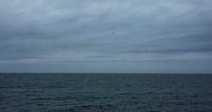 Blauwe oceaan en hemel, vogels die over het bespatten van golven vliegen stock video