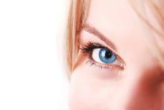 Blauwe oogmacro Stock Afbeeldingen