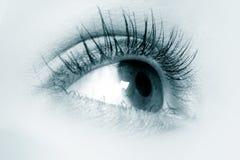 Blauwe oogmacro stock foto's