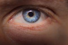 Blauwe oogmacro royalty-vrije stock foto
