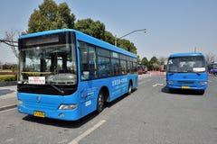 Blauwe openbare bussen Stock Afbeelding