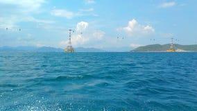 Blauwe overzees in Zonnig weer stock afbeeldingen