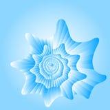 Blauwe overzeese cockleshell. Stock Afbeelding
