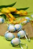 Blauwe Paaseieren en gele tulpen Stock Foto's