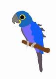 Blauwe papegaai vector illustratie